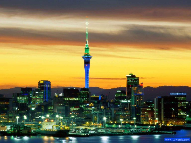 Tripology Holidays Auckland Feature
